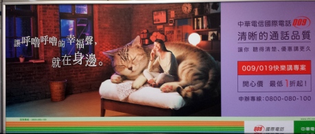 In case you are as confused as I was when I first saw this ad, it was about cell phone. Not the cat.