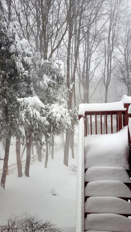 01/23/2015, Great Falls, Virginia